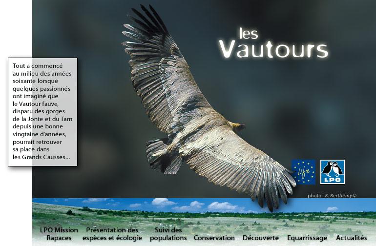 http://vautours.lpo.fr/images/vautours_index2.jpg